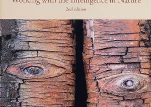 BOOK-NatureSpirits1996